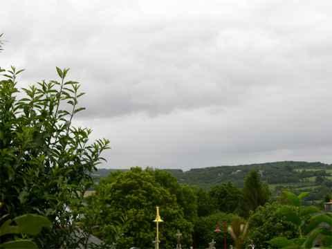 forestlanderneauladscn5495.jpg