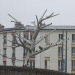 Brest 2012 1807 Michel STEPHAN (181)