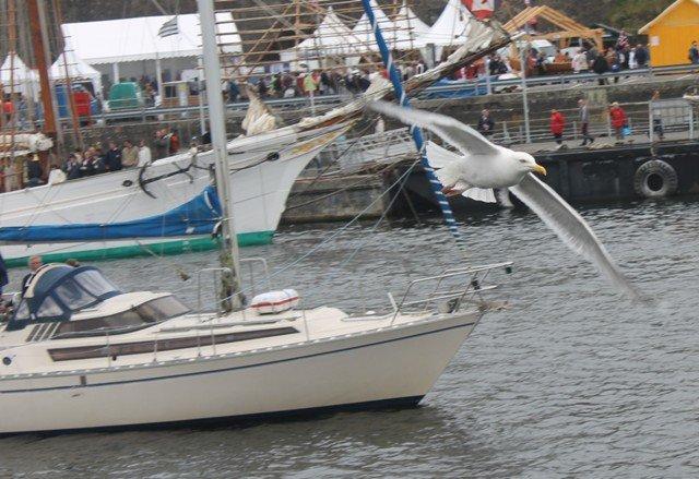 Brest 2012 1807 Michel STEPHAN (203)