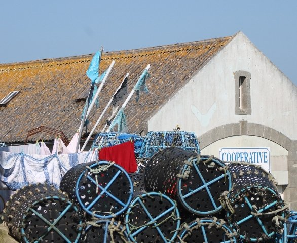 Le Conquet 17 mai 2014 couleurs de Bretagne (48)