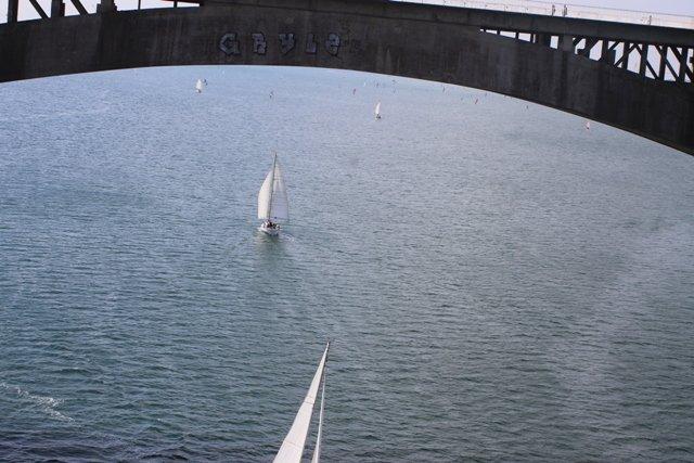 Plougastel- Le relecq 20 ans pont de l'Iroise 20 septembre 2014 (47)