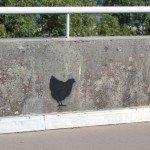 Plougastel- Le relecq 20 ans pont de l'Iroise 20 septembre 2014 (59)