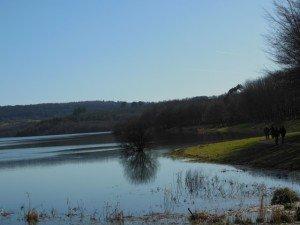 Sizun - Lac du drennec mars 2015 (4)