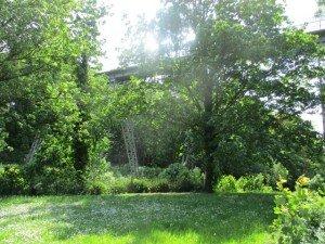 Brest Pont et bois brasserie 052016 (5)