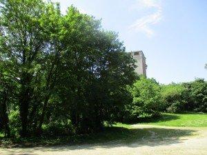 Brest Pont et bois brasserie 052016 (6)