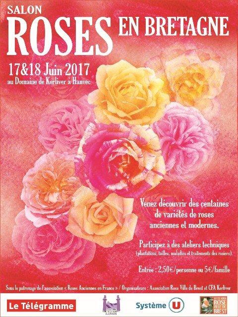 thumbnail_Affiche Roses en Bretagne V9